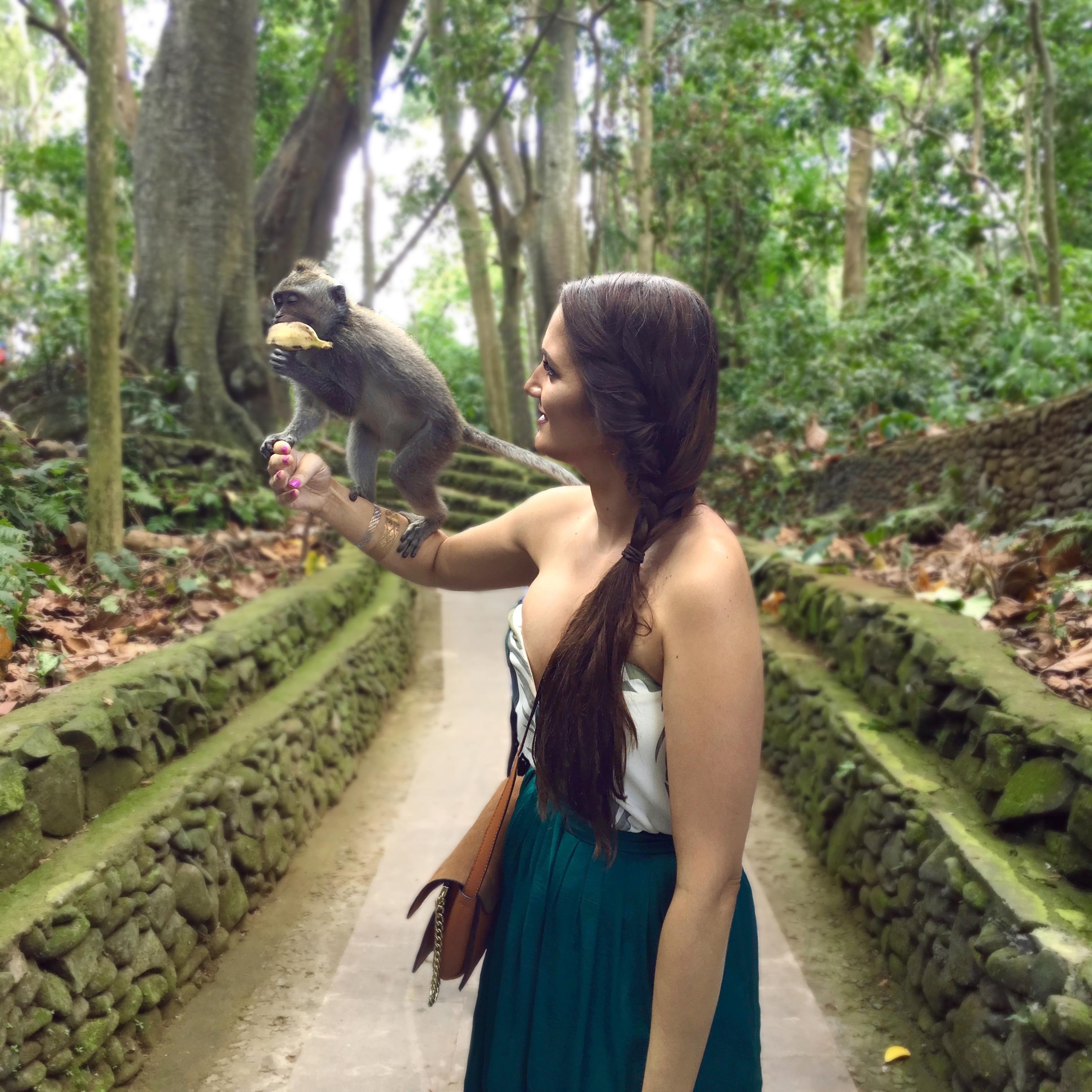 Bali Highlights Ubud Monkey Forrest