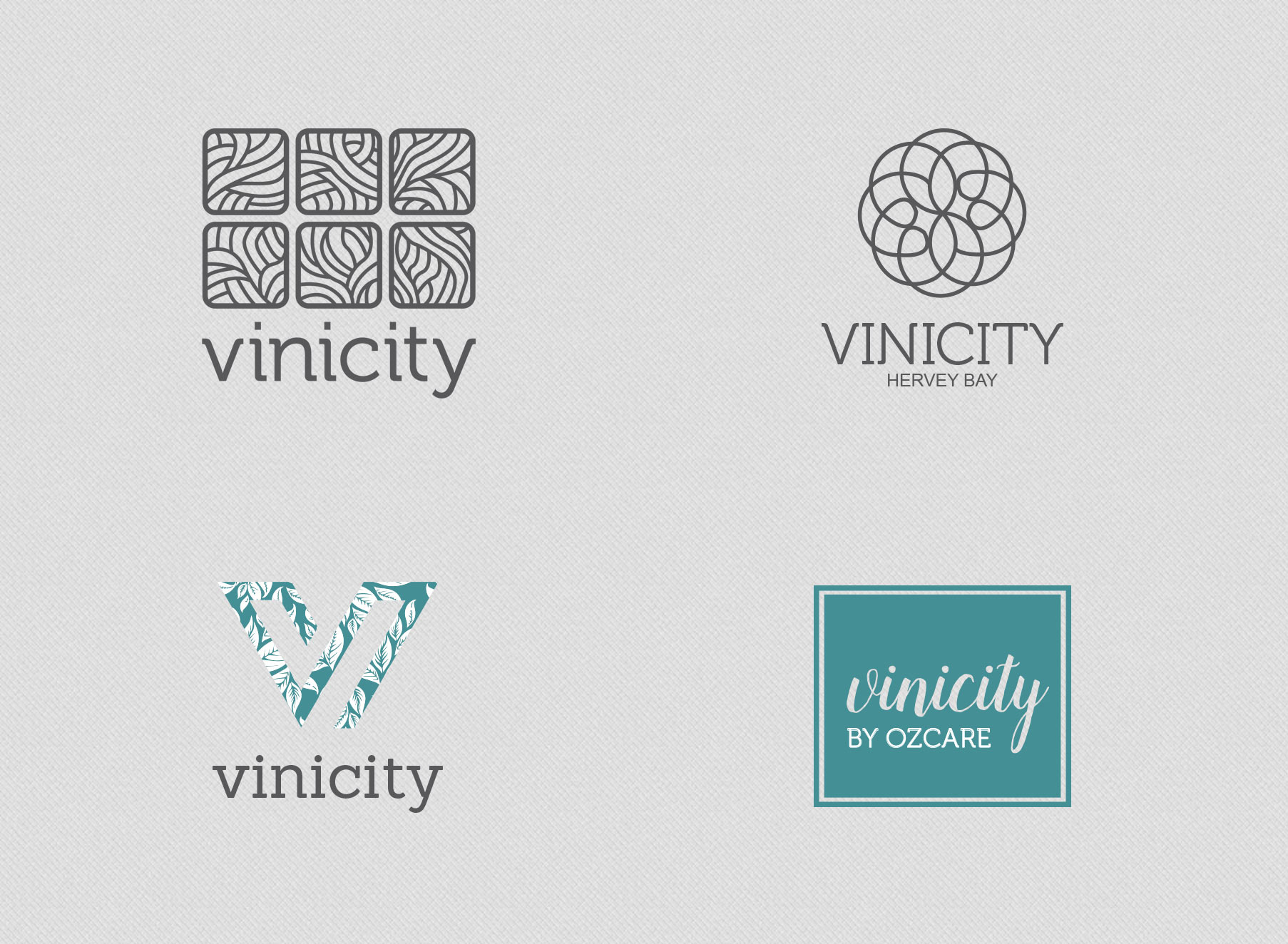 Vinicity Logo Options