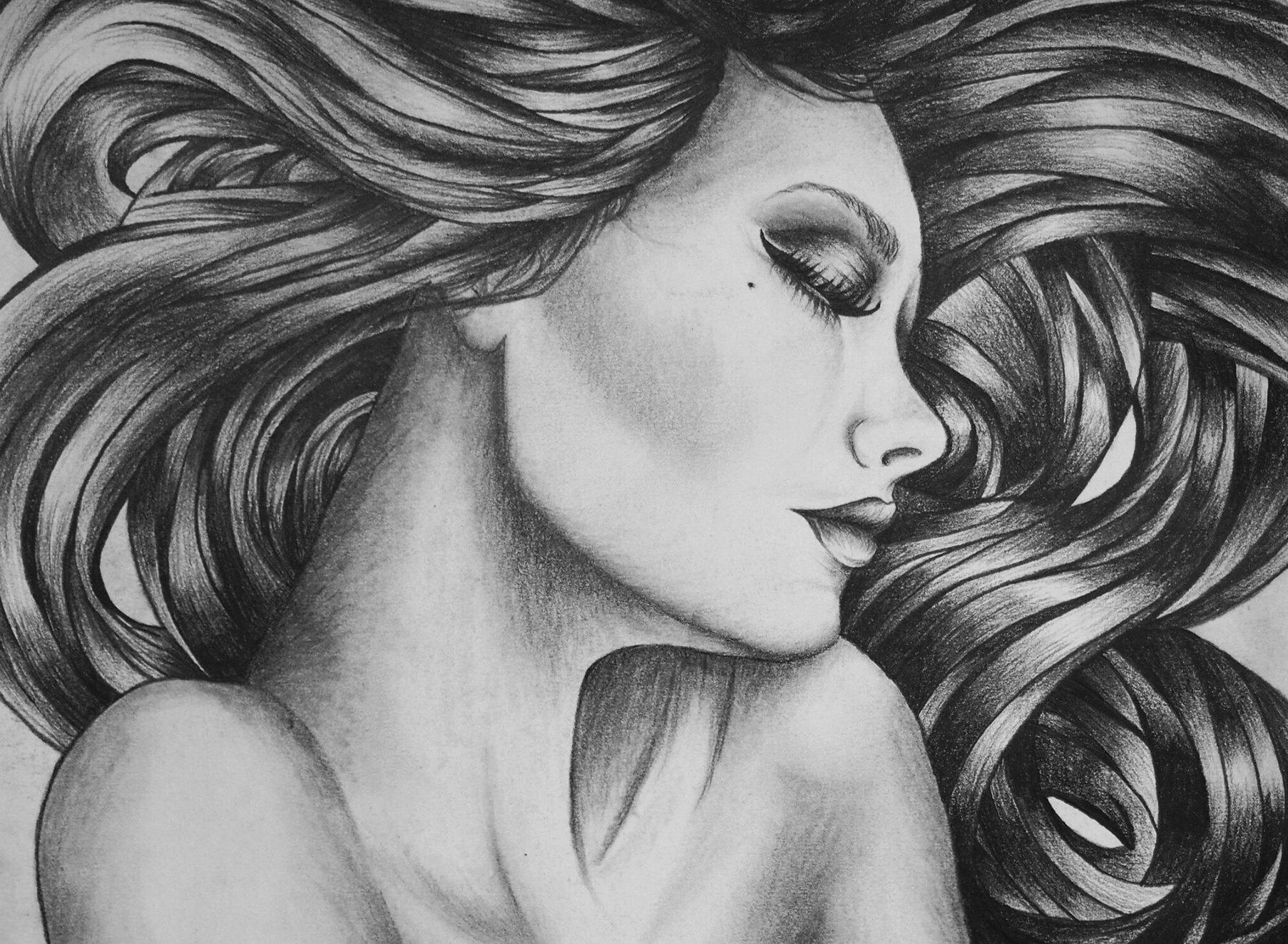 Pencil Drawing - Illustration - Folio