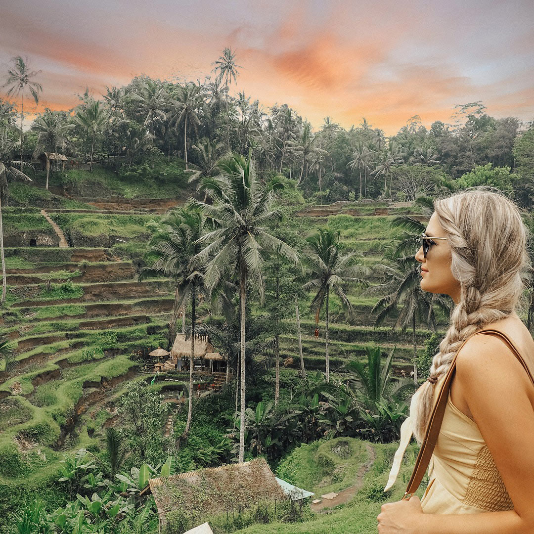 Rice Terraces 1